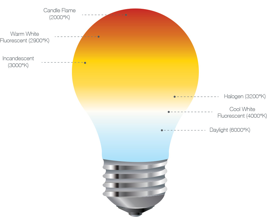 colour-bulb
